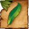 Aztlan Banana Leaf