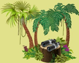Take care of the jungle animals belonging to other players in your tropical reserve and help them grow and progress every day.